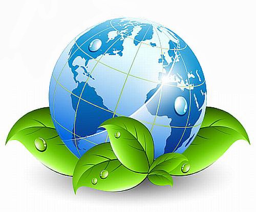 International Cooperation On The Environment