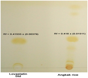 Thin Layer Chromatogram of the angkak rice sample