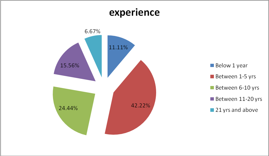 Working Experience