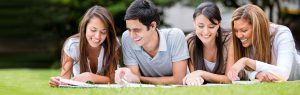 Accidental Opportunities Assignment Help