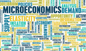 Expert Microeconomics Assignment Help