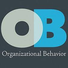 Organisations and Behaviour Assignment