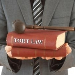 Law of Tort And Law of Contract