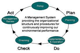 Management system within the organizational environment
