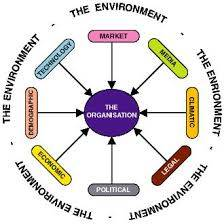 Global Business Environment Assignment