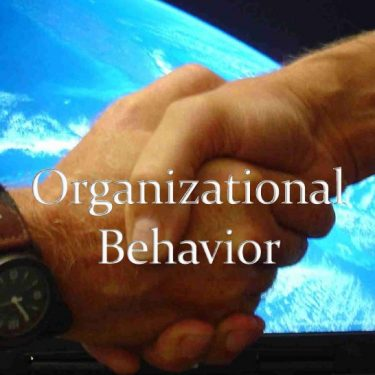 Organisation and Behaviour Assignment