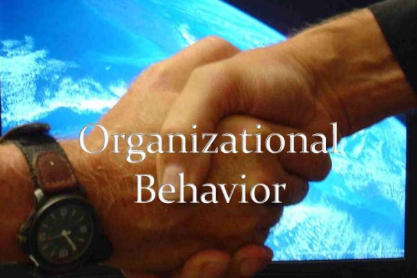 Organisation and Behaviour Assignment