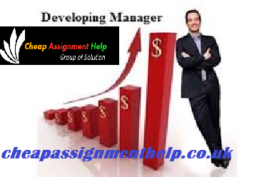 Unit 3-Developing Manager Assignment Help