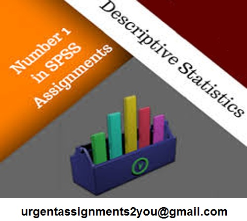 SPSS Project Help UK