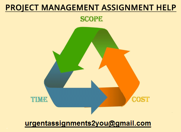 project management assignment help UK