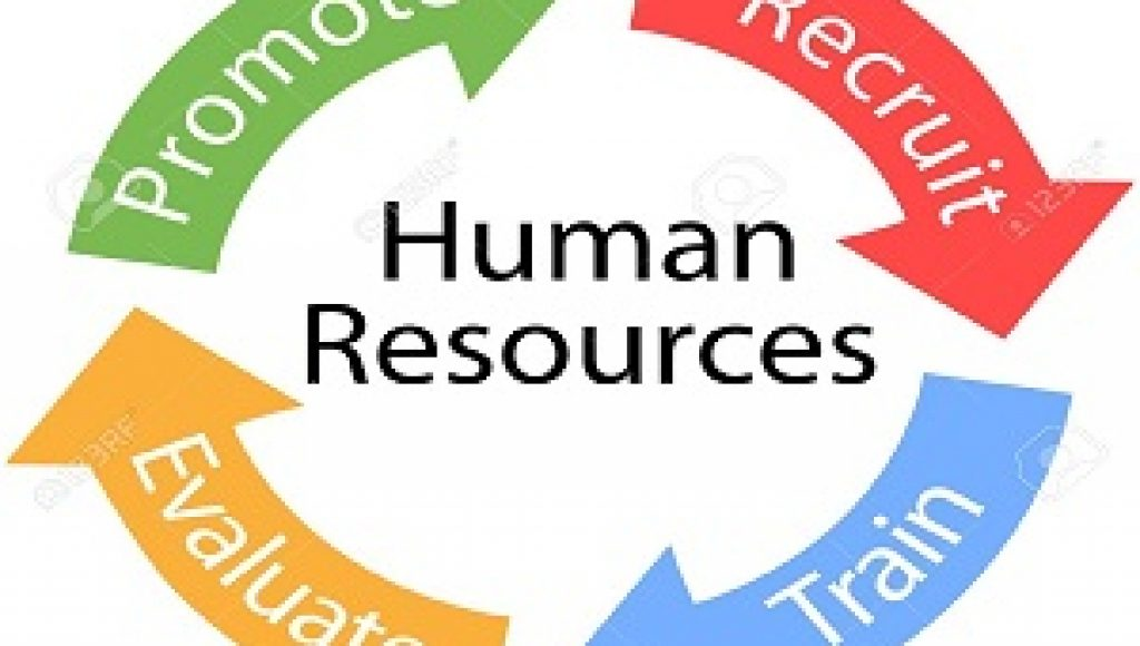 Human Resources Assignment Help | HR Projects | HR