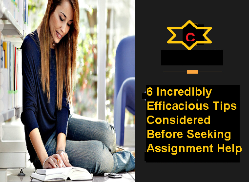 6 Incredibly Efficacious Tips Considered Before Seeking Assignment Help