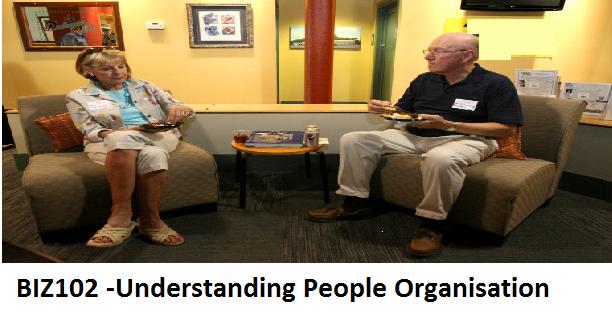 BIZ102 -Understanding People Organisation