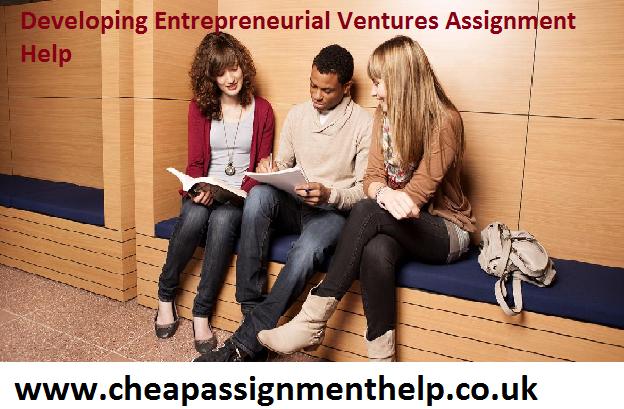 Developing Entrepreneurial Ventures Assignment Help