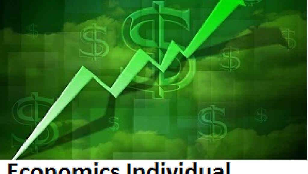 Economics Individual Assignment