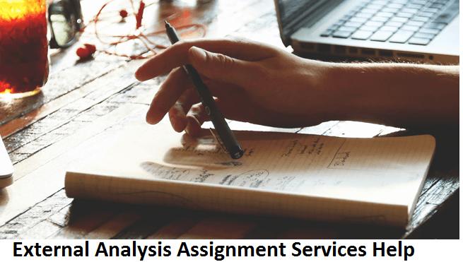 External Analysis Assignment Services Help