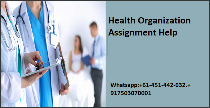 Health Organization Assignment Help
