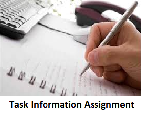 TaskInformationAssignment