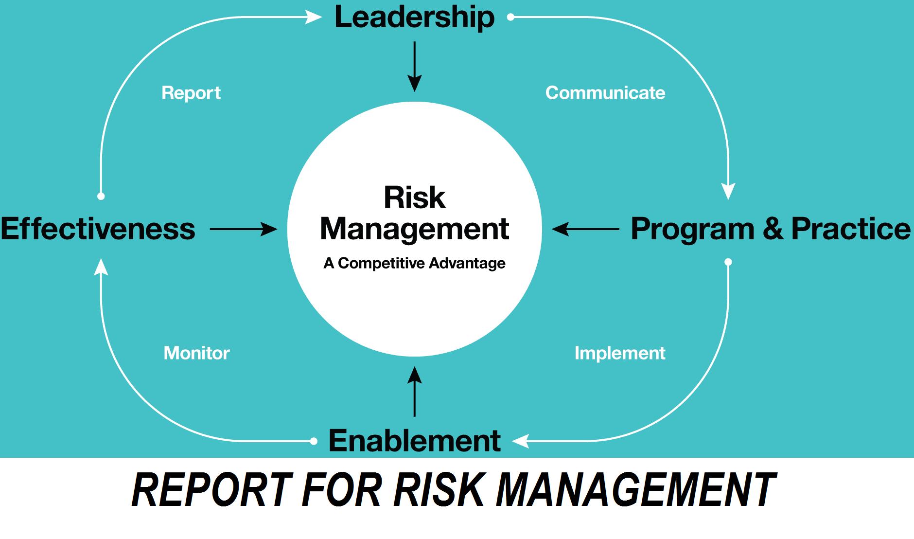 REPORT FOR RISK MANAGEMENT