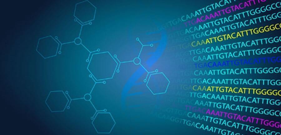 Bioinformatics Assignment Help