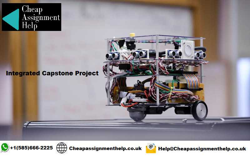 BUS301 Integrated Capstone Project