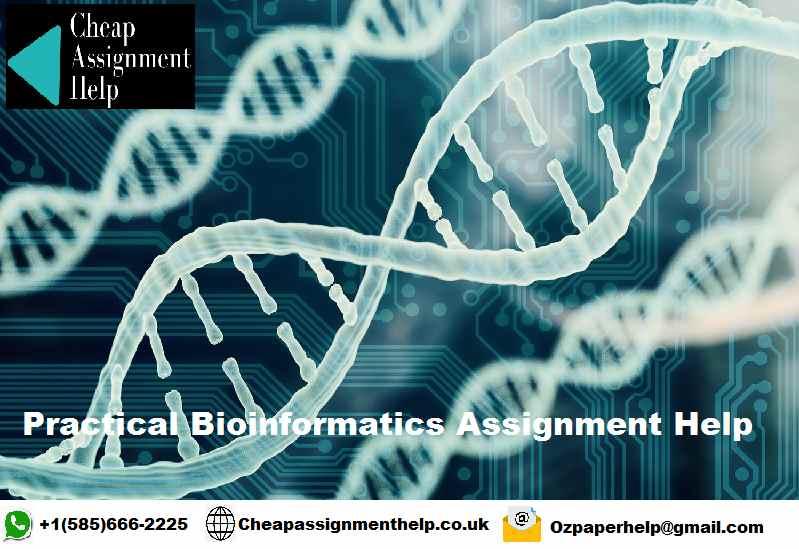 Practical Bioinformatics Assignment help